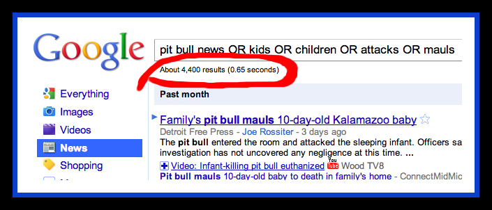 Pit Bull News Results